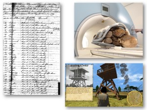 Humanities data--a mummy, a log book, a game
